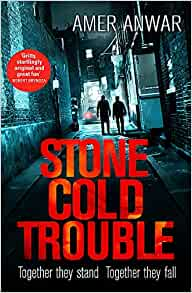 Stone Cold Trouble by Amer Anwar